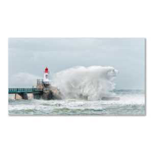 Polar Bear in the storm par Yvon HAZE